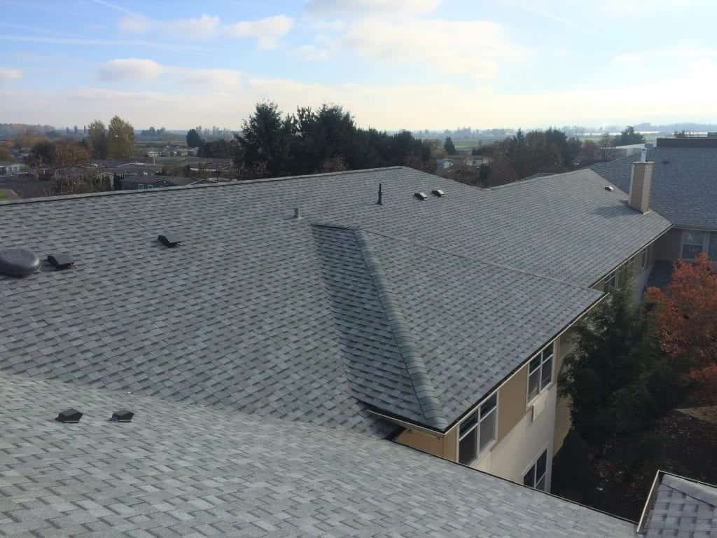 The roof of a building